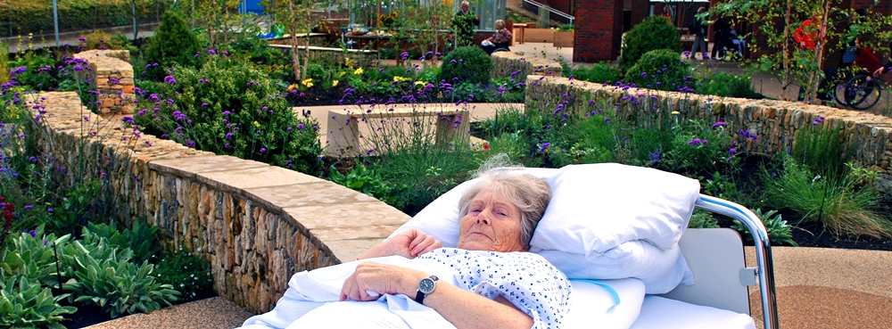 Horatios Garden bed patient