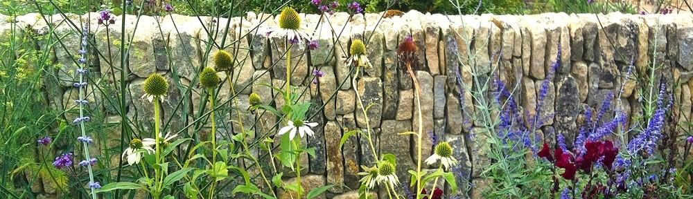 Horatios Wall & plants