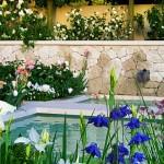 Chelsea Flower Show 2006 Laurent Perrier Garden